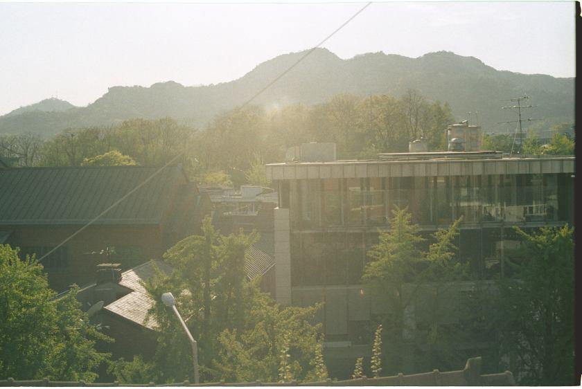IMG040259