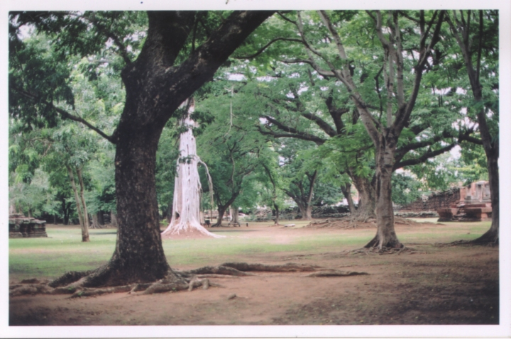 Thailand2004_15