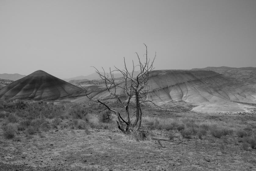 Being in Desert_01